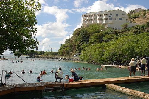 Dolphin Discovery | Tortola, BVI