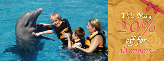 Dolphin Discovery- Mother's Day Specials