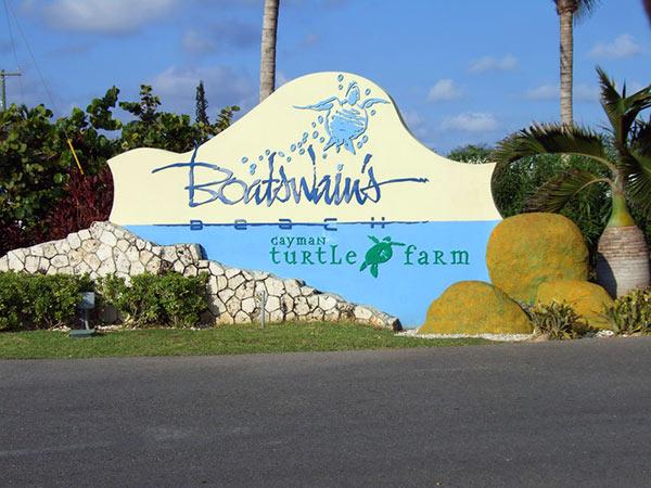 Boatswain's Turtle Farm Grand Cayman Island