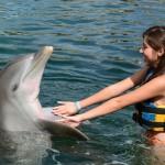 """My """"Quince años en Dolphin Discovery"""""""