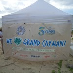 Dolphin Discovery brings a ton of help to Cayman's Beaches