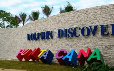 Let's Party at Punta Cana!