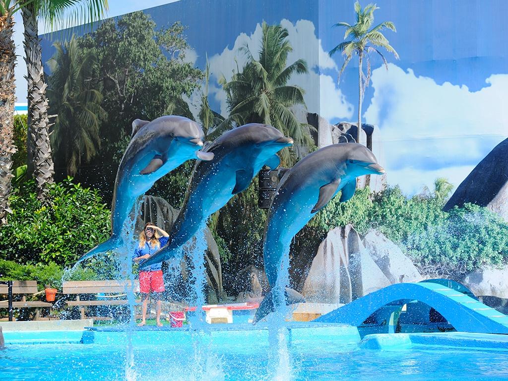 zoo marine rome